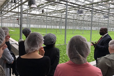 A group of interns tours greenhosue at Green City Growers
