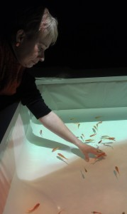 Playing with the fishes