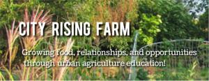 Common Ground - city rising farm