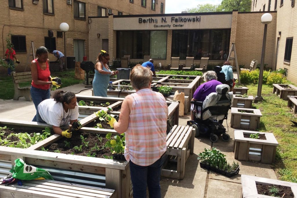 Building Demand for Healthy Neighborhoods at Scranton Castle