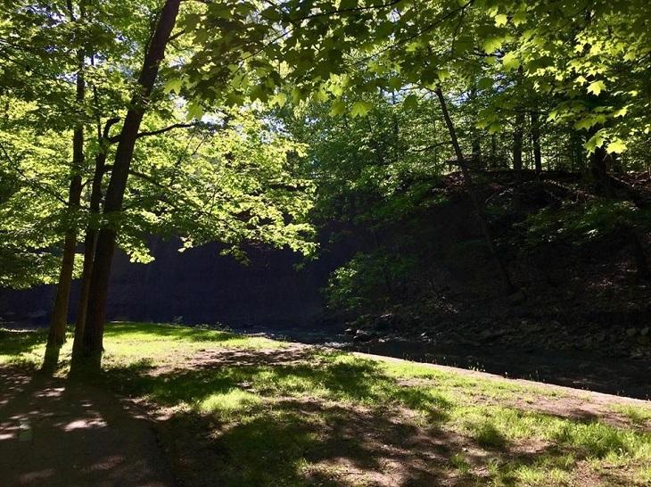 Cleveland Metropark: Euclid Creek Reservation