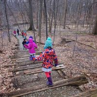 a group of children walking through the woods