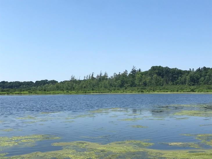 Landscape photo of lake