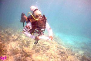 A SYATT scuba diver in the water